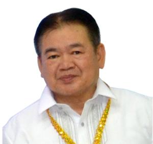 Director / Vice-President / Treasurer